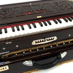 manoj-sarder-changing-harmonium. diamu