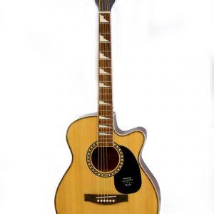 Fender130 diamu