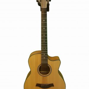 AS-100 Acoustic Diamu