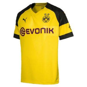 Dortmund Home Jersey Diamu