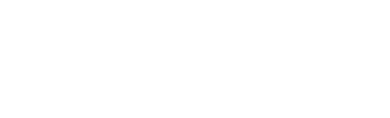 Diamu LOGO White