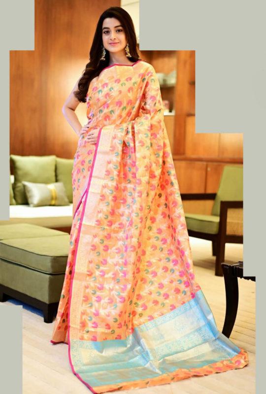 YNF Dhara Kanjivaram silk